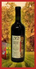 Vino-cabernet-moravia-2006