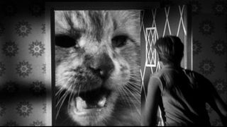 A Jack Arnold The Incredible Shrinking Man DVD Review PDVD_011