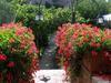 1_garden_palazzo_2